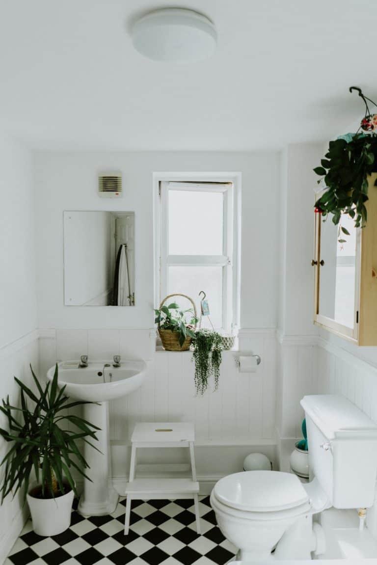 Architecture et aménagement d'intérieur, Aménagement d'intérieur
